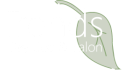 Trends Day Spa and Salon